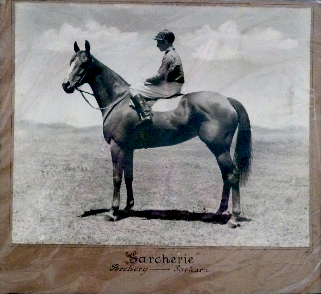 Sarcherie had four starts in the Melbourne Cup with two seconds, one third, and one no place.